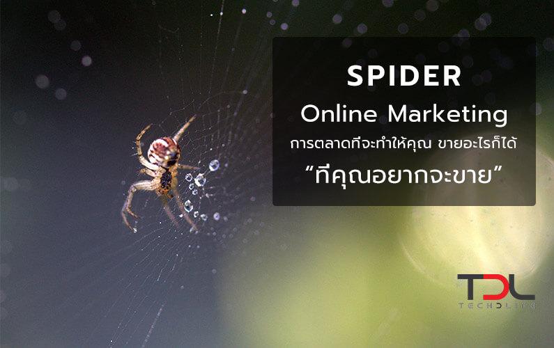 Spider Online Marketing การตลาดที่จะทำให้คุณขายอะไรก็ได้ ที่คุณอยากขาย